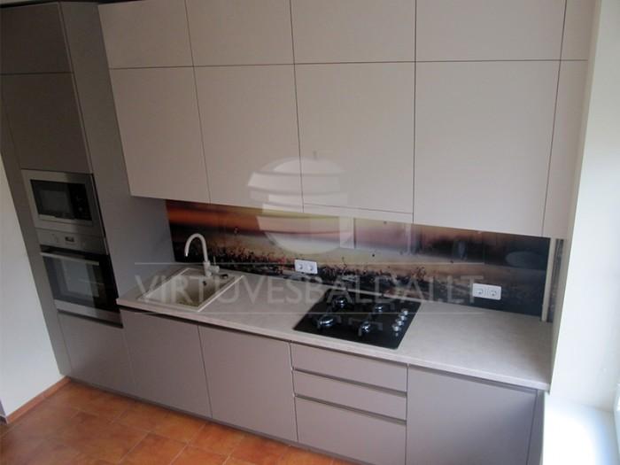 virtuvė su stiklo sienele